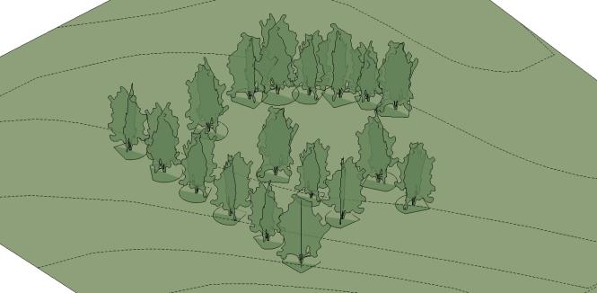 trees_03